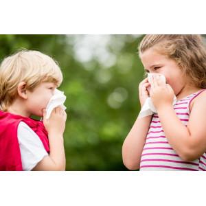 Rolety dla alergika