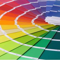 Modne kolory rolet - na jakie się zdecydować?